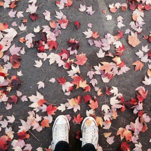 5 cosa da fare in autunno
